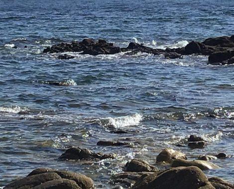 zee bretagne